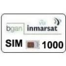 Sim Card Inmarsat BGAN prepagata 1000 unità, validità 365 gg