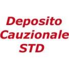 31 Deposito Cauzionale Tel. CellGSM / MIFI